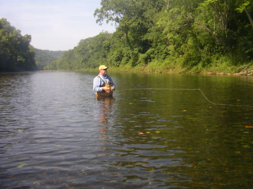 White river beaver dam for White river arkansas fishing report