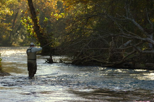 Brian Sloss is seen fishing near one of the islands on the Eleven Point River.
