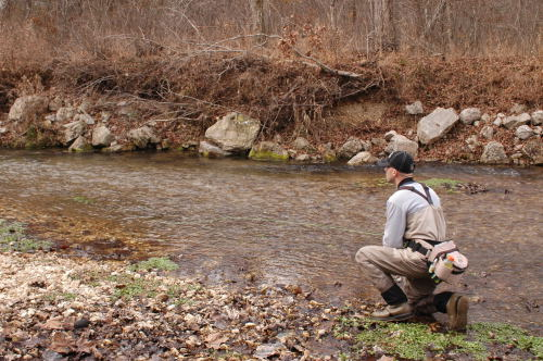 Brian Wise is fishing a likely run on the Barren Fork Creekk in 2008.