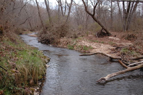A section of Blue Spring Creek that flows through Blue Spring Creek Conservation Area.