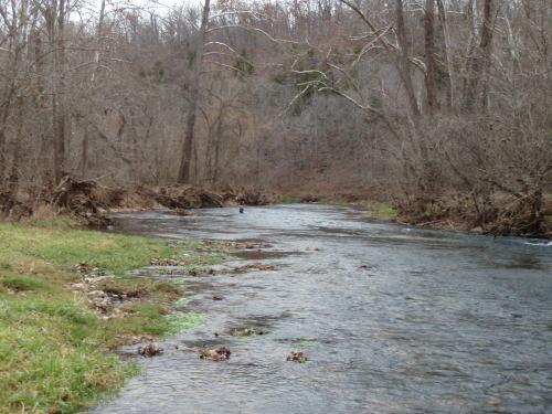 2008-11-29pic051(Bennett Spring State Park)(resized)