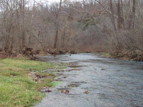 2008-11-29pic052(Bennett Spring State Park)(resized)