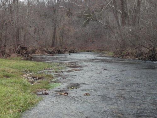 2008-11-29pic053(Bennett Spring State Park)(resized)