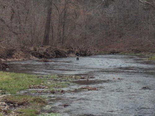 2008-11-29pic054(Bennett Spring State Park)(resized)