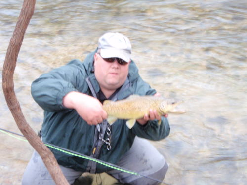 Trout park bennett spring state park for Bennett springs trout fishing