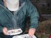 2008-11-30pic007(Roaring River)(resized)