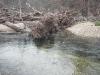 2008-11-30pic020(Roaring River)(resized)