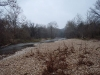 2008-11-30pic024(Roaring River)(resized)