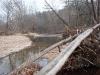 2008-11-30pic025(Roaring River)(resized)