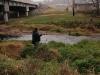 2008-11-30pic111(Crane Creek)(resized)