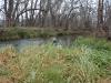 2008-11-30pic116(Crane Creek)(resized)