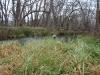 2008-11-30pic117(Crane Creek)(resized)