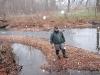 2008-11-30pic122(Crane Creek)(resized)