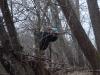 2008-11-30pic125(Crane Creek)(resized)
