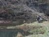 2008-11-30pic128(Crane Creek)(resized)