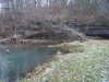 2008-11-30pic129(Crane Creek)(resized)