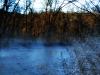 2009-11-27pic005(Edited)(Resized)
