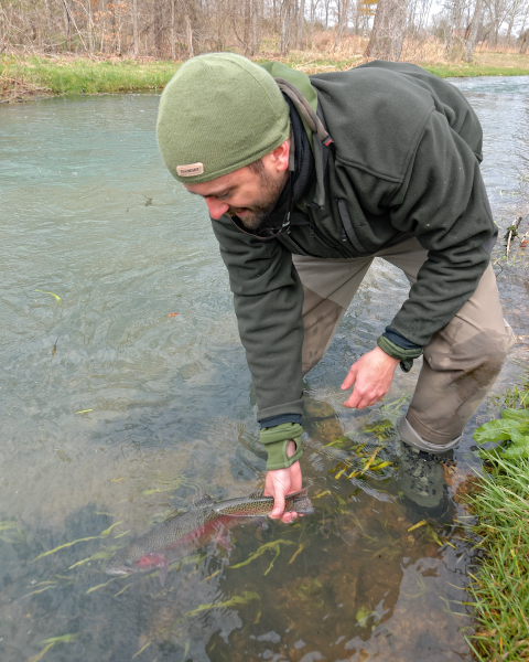 fish out of water essay Fish descriptions types of fish  july and august is a good time to target browns out a bit deeper,  all streams with decent water flow will attract fish,.