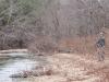 2008-11-28pic047(Barren Fork)(resized)