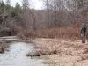 2008-11-28pic048(Barren Fork)(resized)