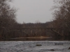 2008-11-29pic045(Niangua River)(resized)