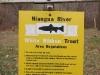 2008-11-29pic050(Niangua River)(resized)