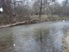 2008-11-30pic018(Roaring River)(resized)