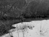 2009-02-01pic005(edited)(resized)