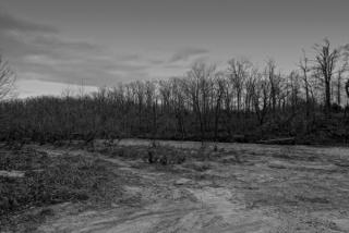 2009-11-29pic012(Edited)(Resized)