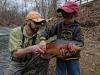 Dry Run Creek Rainbow Trout