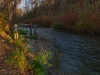 2012-11-10pic007(Edit001)(Resized-800px)